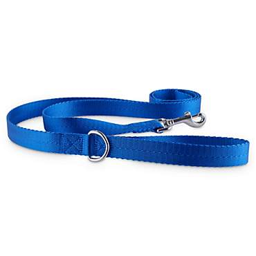 Good2Go Blue Nylon Dog Leash, 1