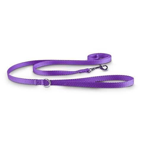Good2Go Purple Nylon Dog Leash, 1/2