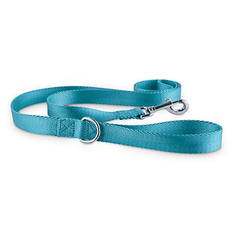Good2Go Turquoise Nylon Dog Leash, 1