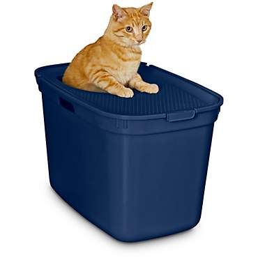 So Phresh Navy Top-Entry Litter Box