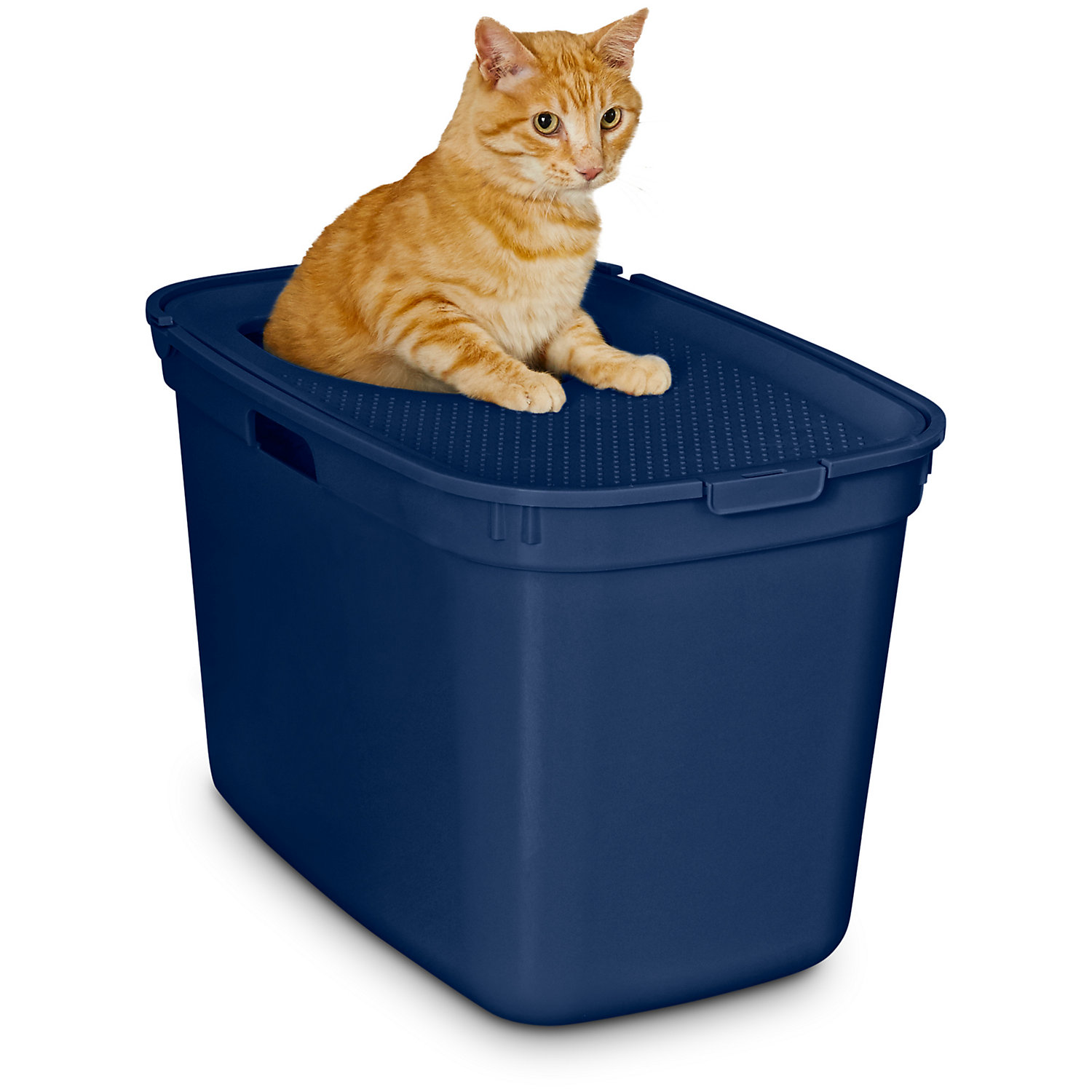 Practical color for top opening litter box