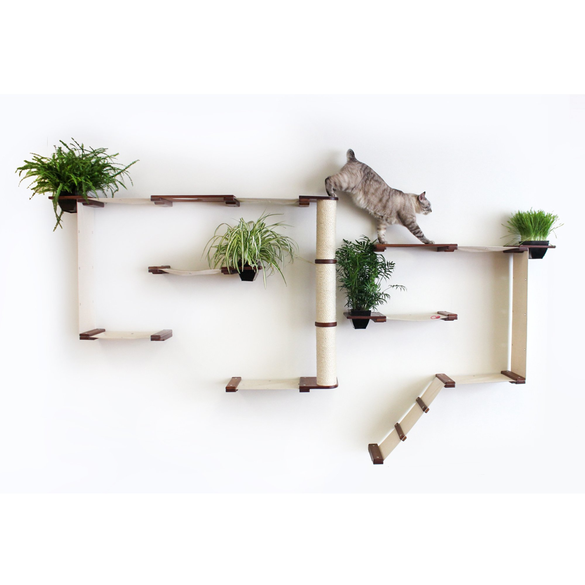 Catastrophicreations The Cat Mod Gardens Complex With Planters For Cats In English Chestnut, 109 In W X 63 In H, 58 Lb