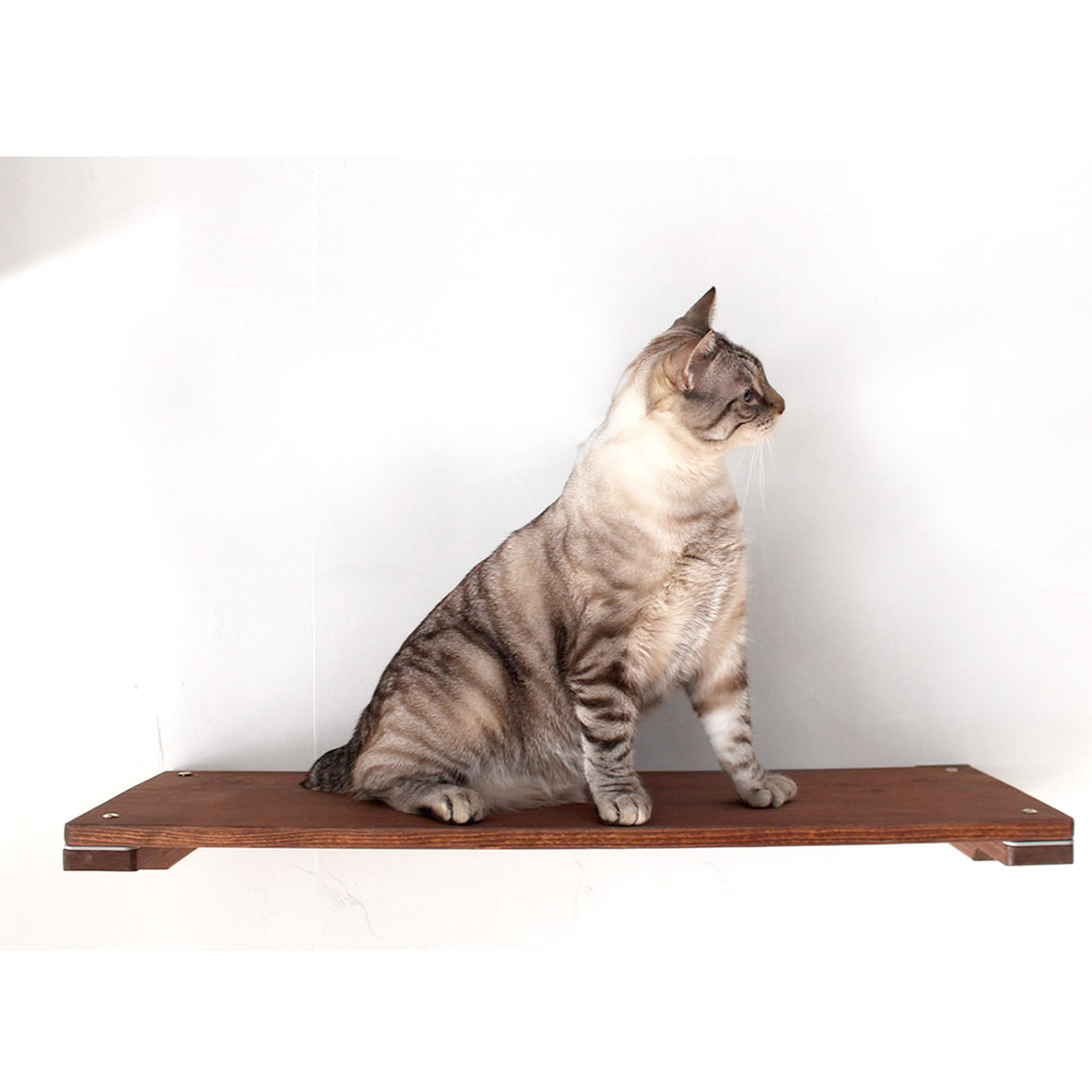 """Catastrophicreations The Cat Mod 34"""" Solid Wood Shelf For Cats In English Chestnut, 34 In W X 3 In H, 8 Lb"""