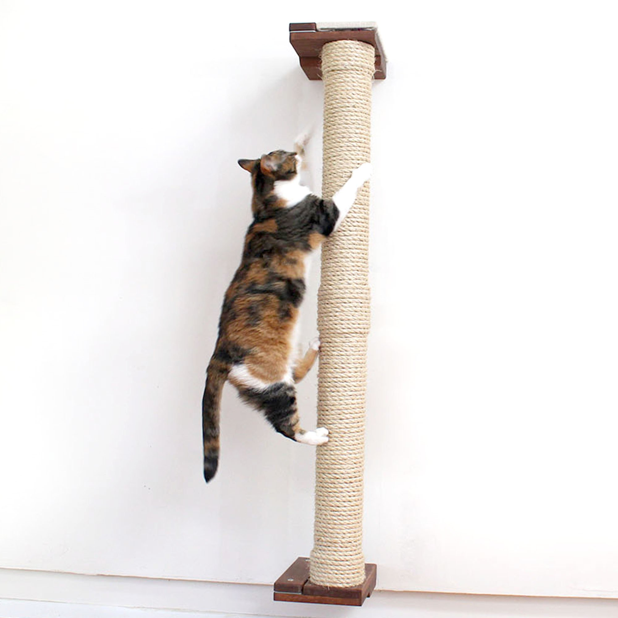 """Catastrophicreations The Cat Mod 48"""" Wall Mounted Sisal Pole For Cats In English Chestnut, 8 In W X 53 In H, 18 Lb"""