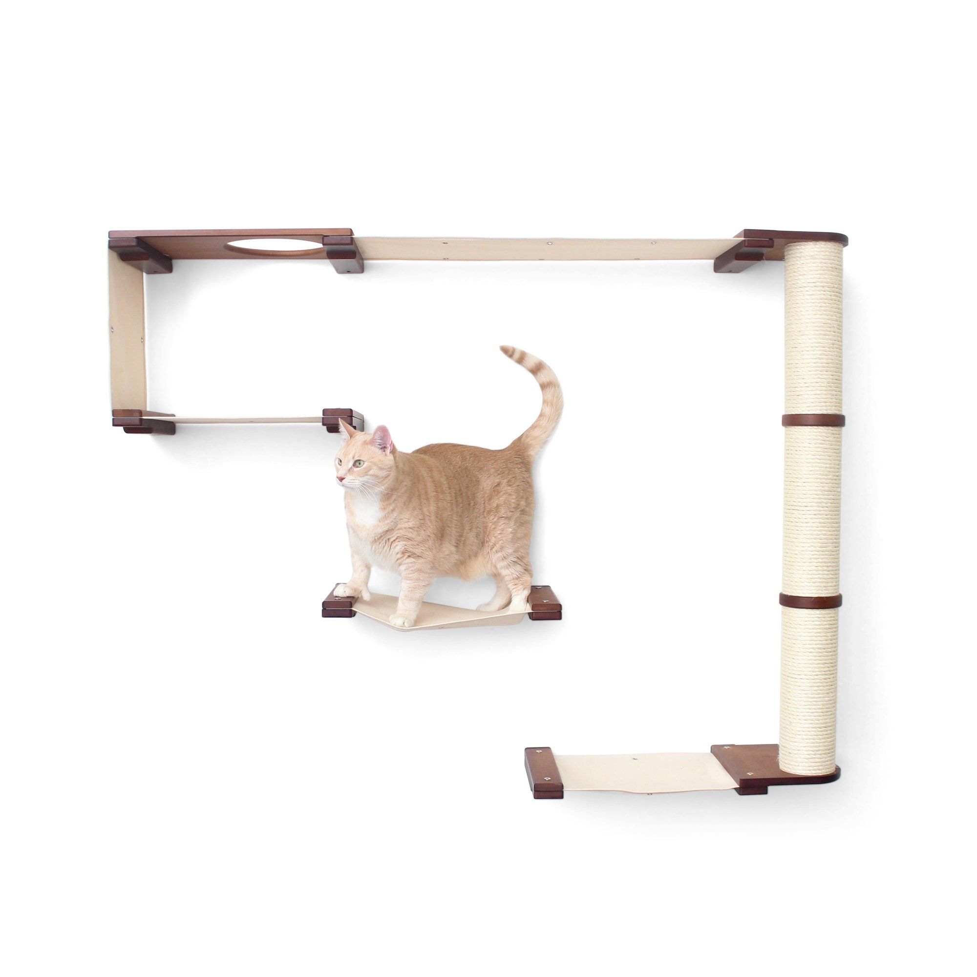 Catastrophicreations The Cat Mod Climb Track Hammocks With Sisal Pole For Cats In English Chestnut, 50 In W X 69 In H, 42 Lb