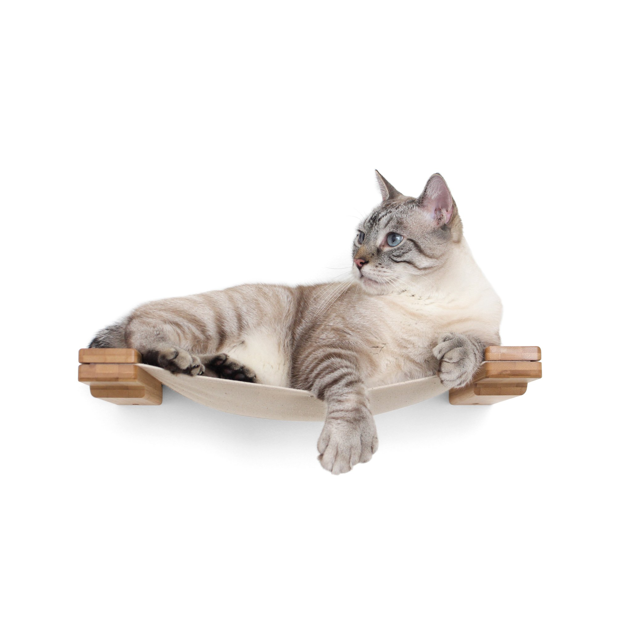 Catastrophicreations The Cat Mod Lounge Hammock For Cats In English Chestnut, 18 In W X 3 In H, 5 Lb