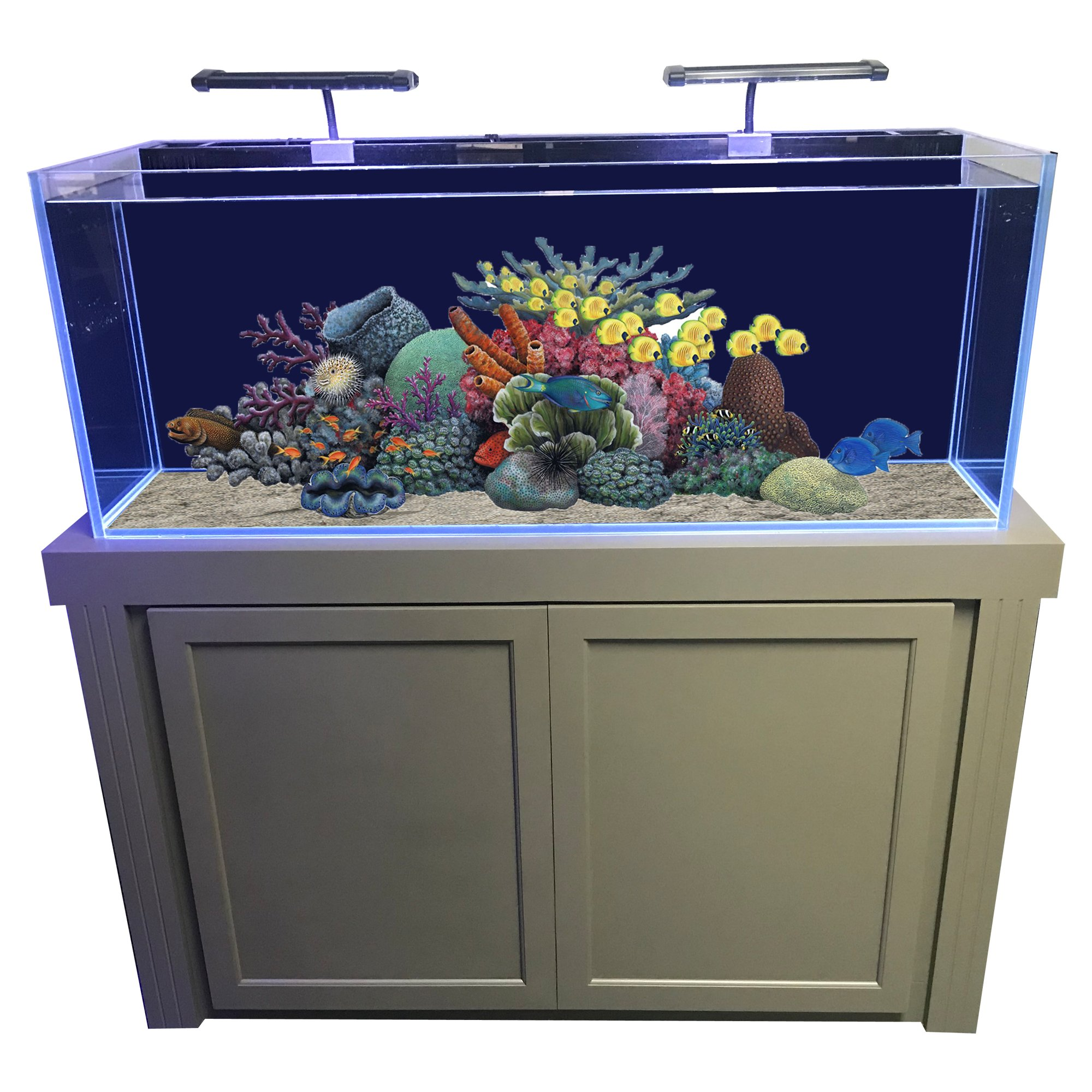 R j enterprises fusion x rimless glass tank cabinet for 55 gallon fish tank petco