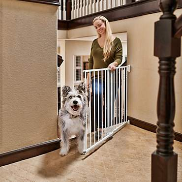 You & Me Stairway Walk-Thru Pet Gate