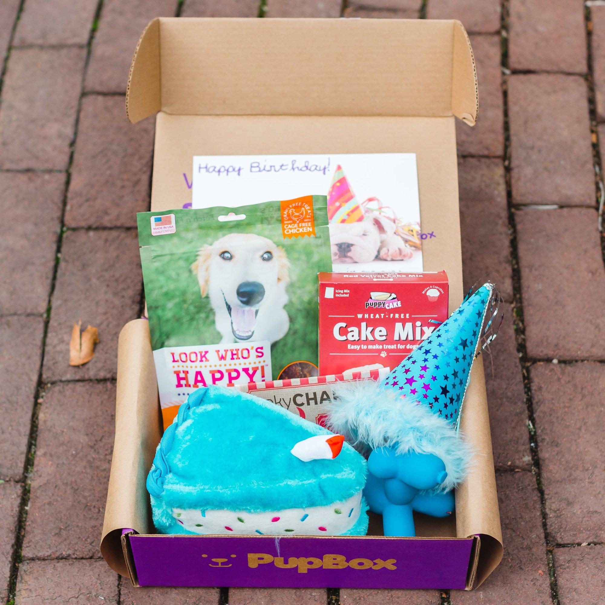 Birthday Boy Puppy & Dog Subscription Boxes