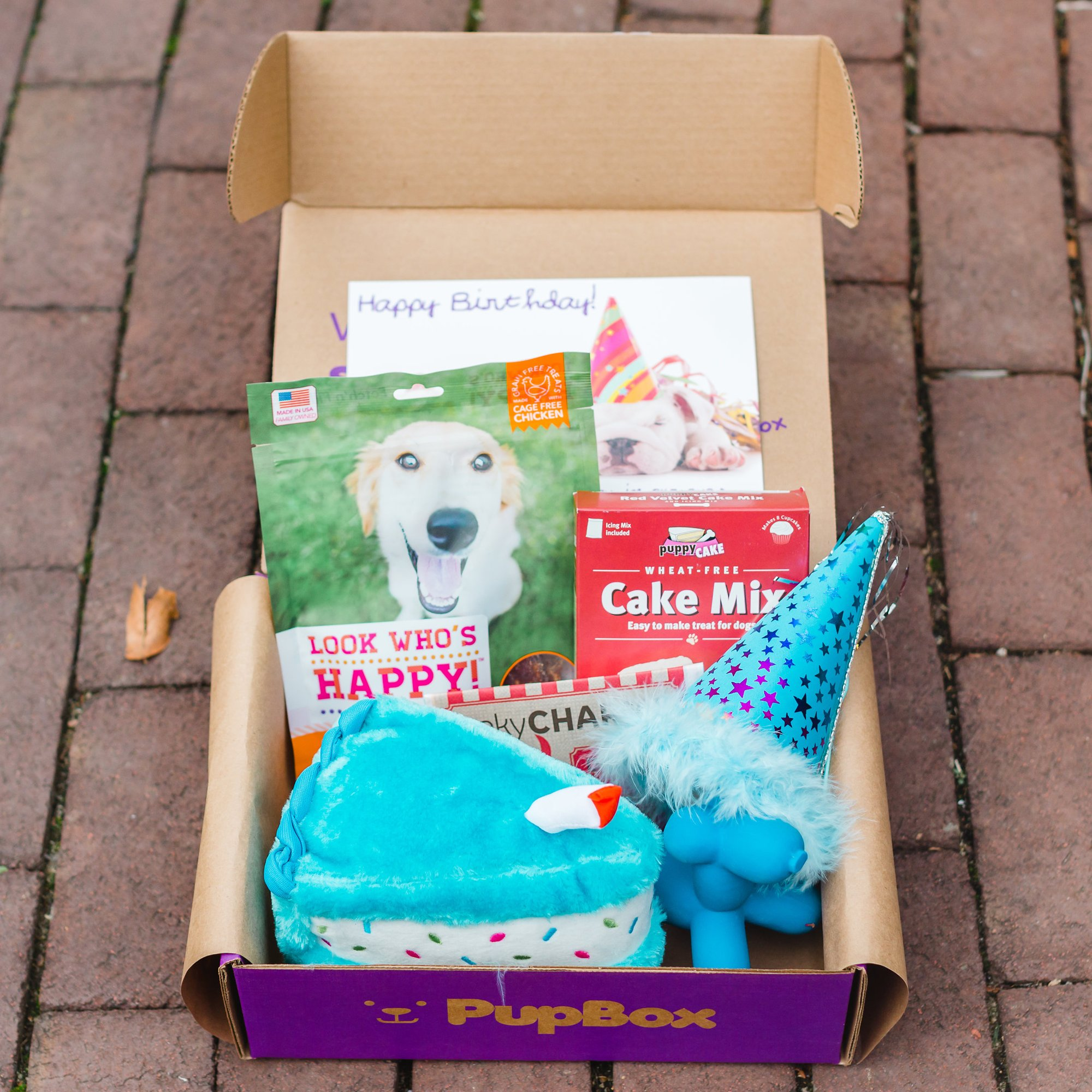 PupBox Birthday Boy Box Large