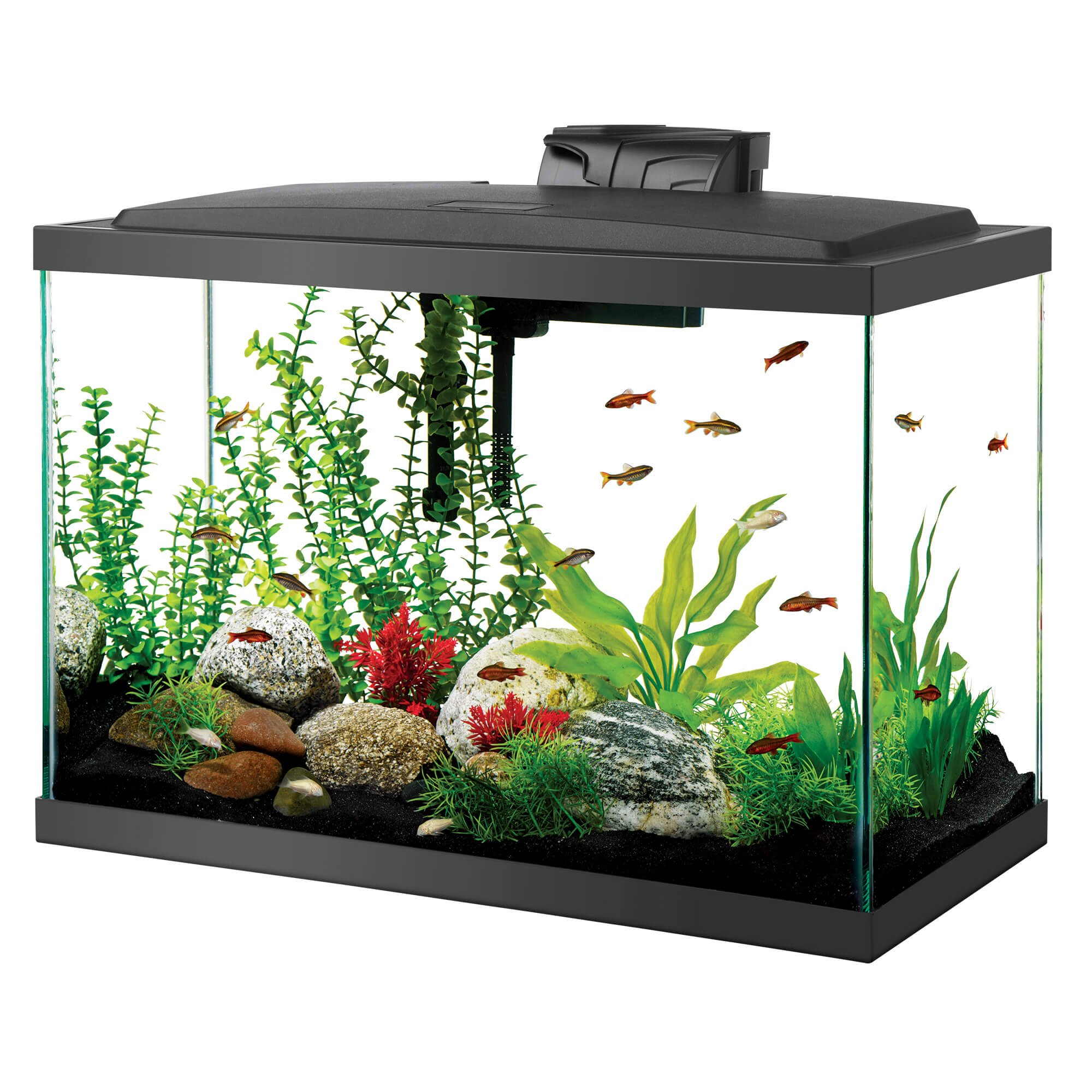 Aqueon led aquarium kit 20h black petco for Aqueon fish tank