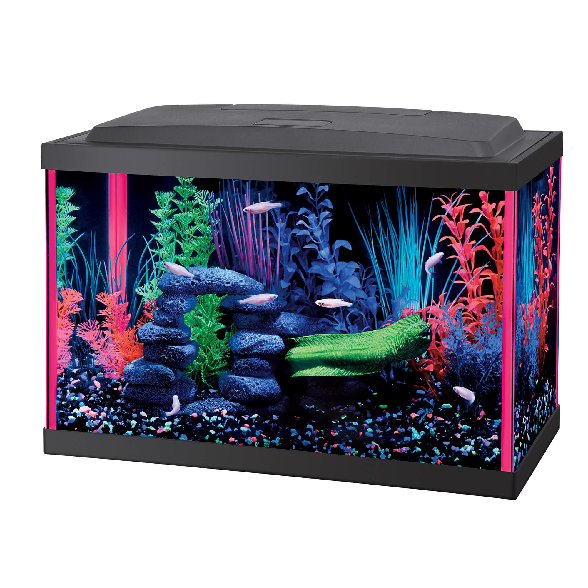 Aqueon LED 5 5 Gallon Pink Aquarium Kit