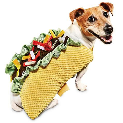 Bootique Taco 'Bout It Dog Costume