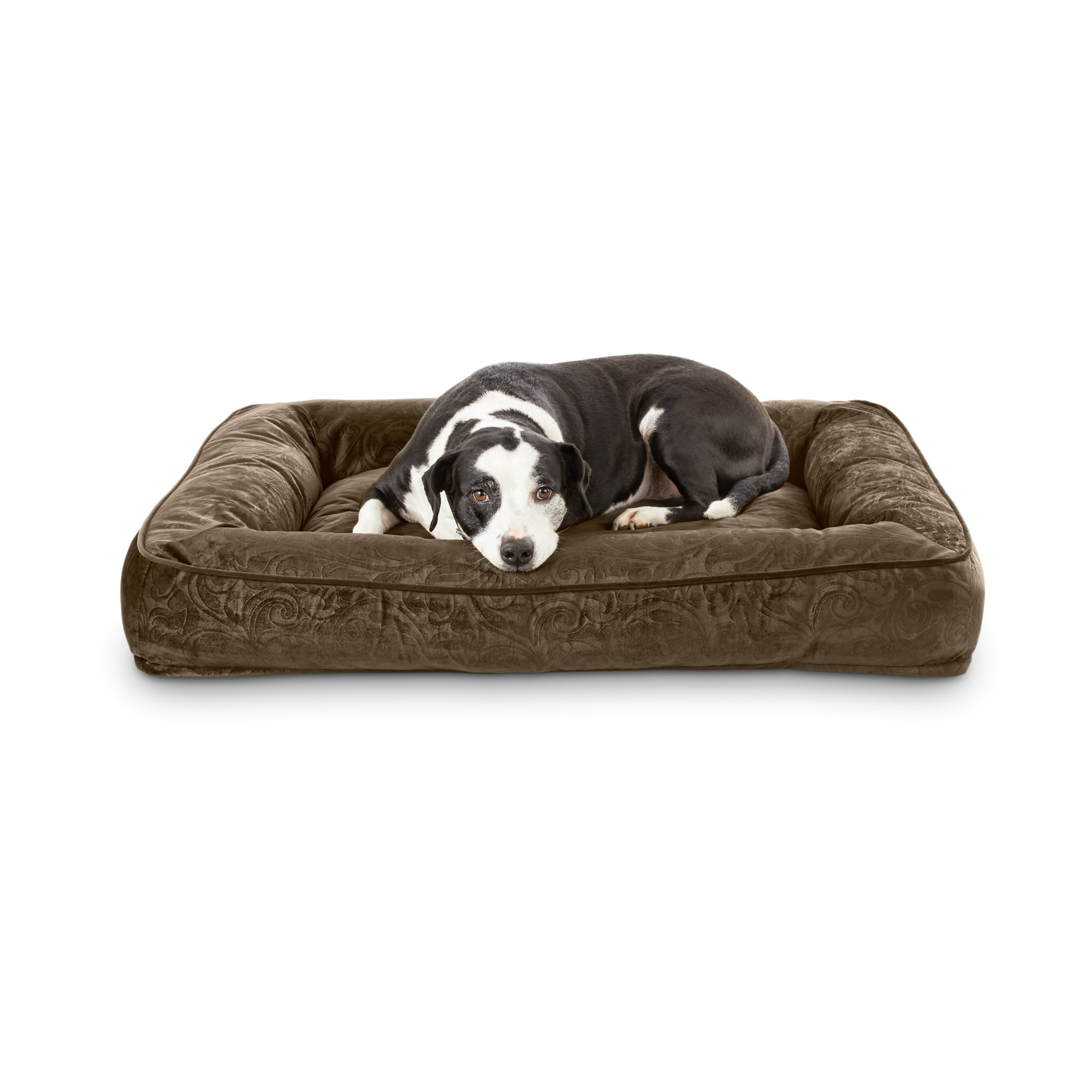 bed petco beds dog hypoallergenic round brenpalms co