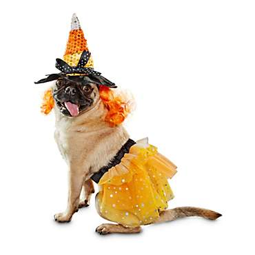 Bootique Candy Corn Witch Dog Costume