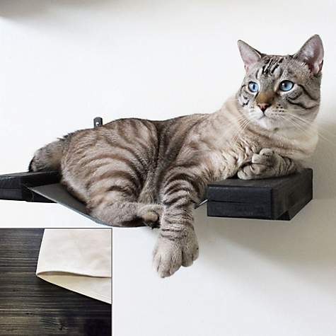 CatasrophiCreations Hammock Lounge Shelf for Cats in Onyx