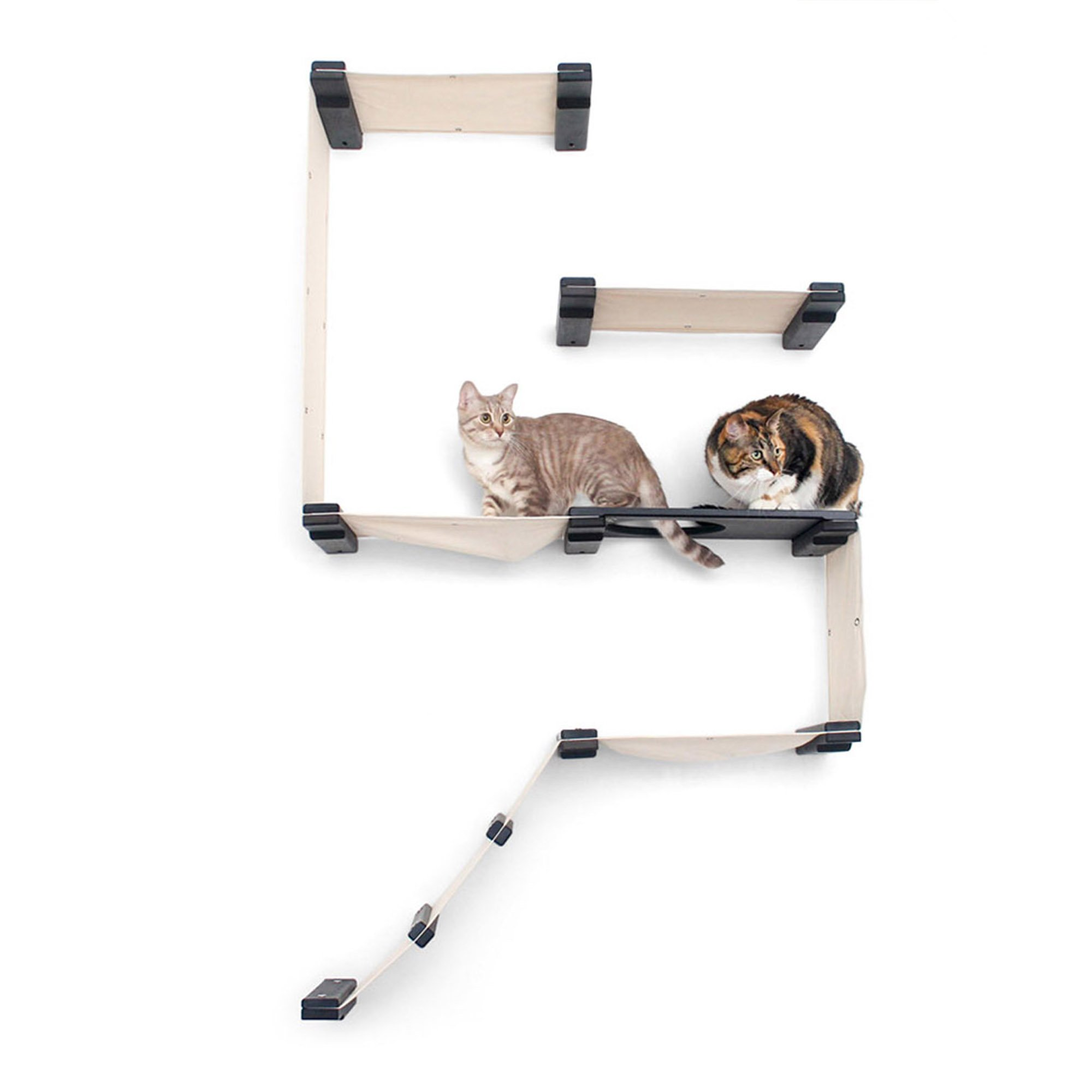 Catastrophicreations The Cat Mod Fort Lounging Hammocks For Cats In Onyx, 38 In W X 60 In H, 35 Lb