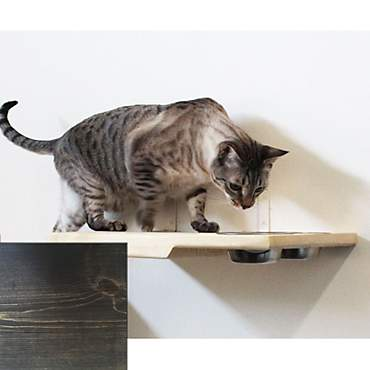 CatastrophiCreations Solid Wood Dining Shelf for Cats in Onyx
