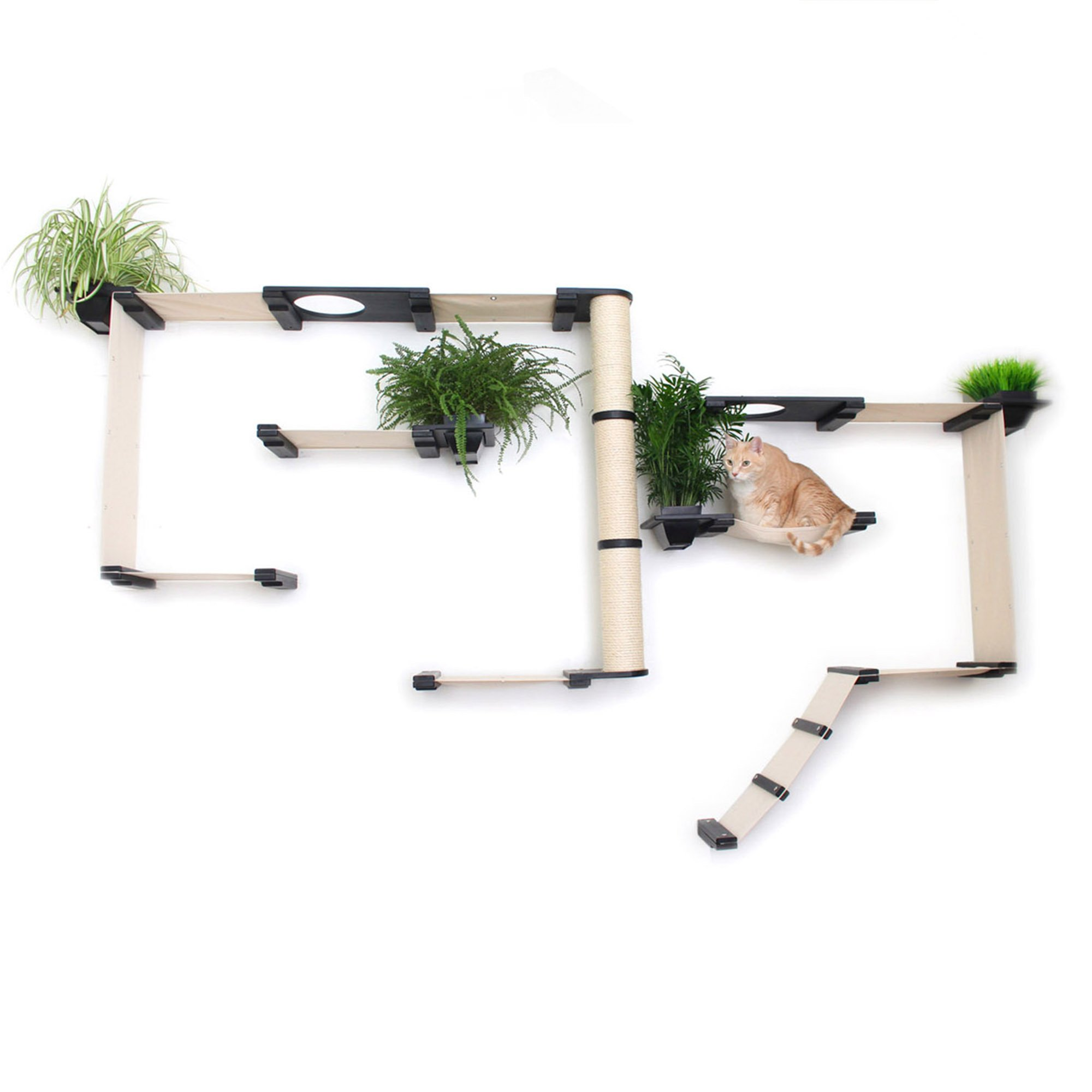 Catastrophicreations The Cat Mod Gardens Complex With Planters For Cats In Onyx, 109 In W X 63 In H, 58 Lb