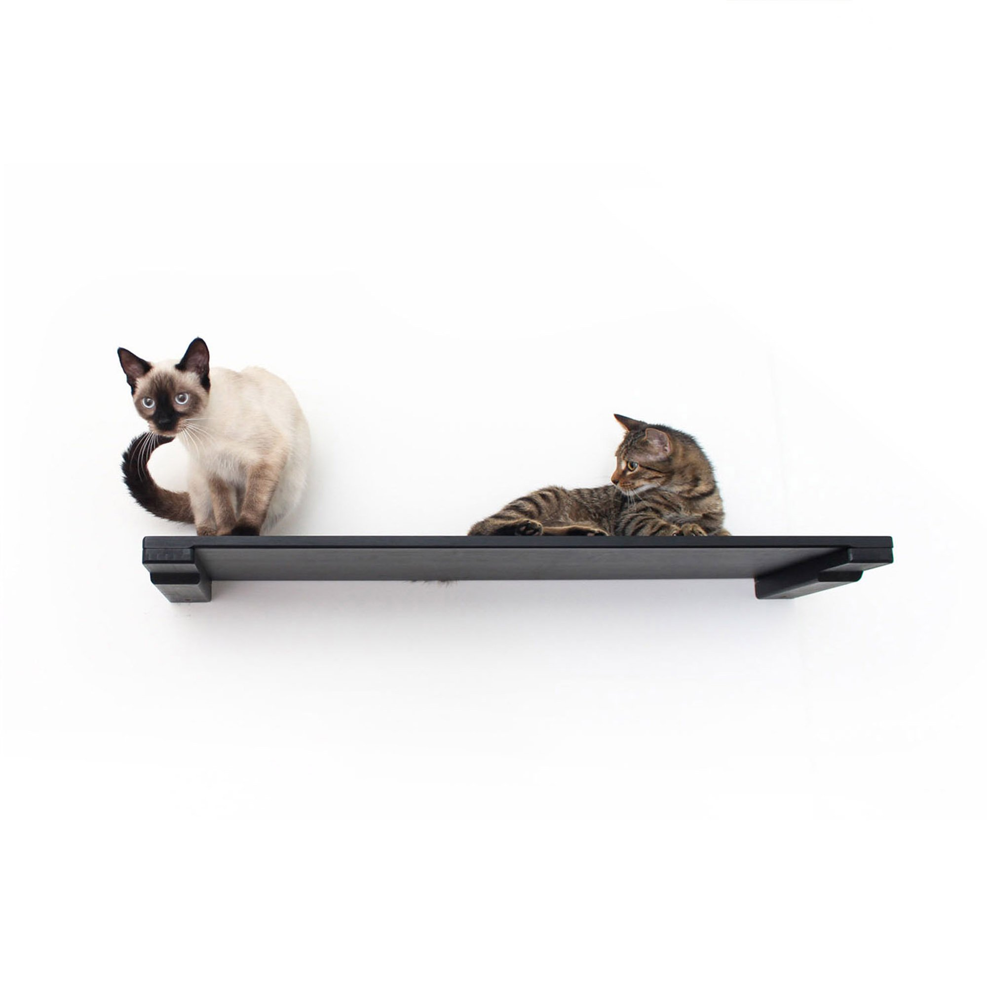 """Catastrophicreations The Cat Mod 34"""" Solid Wood Shelf For Cats In Onyx, 34 In W X 3 In H, 8 Lb"""