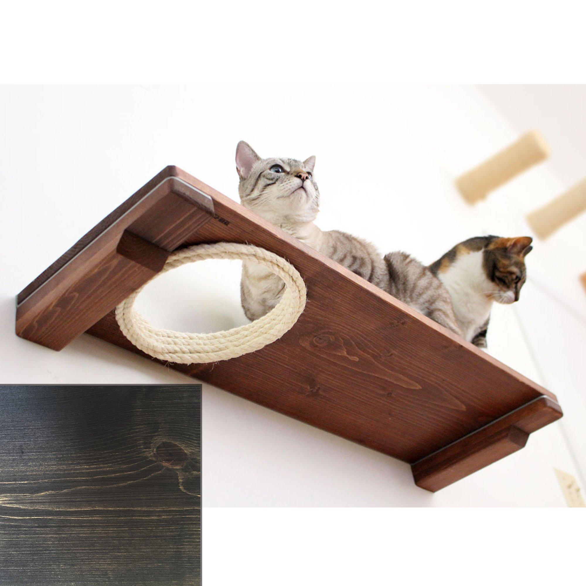 """Catastrophicreations The Cat Mod 34"""" Escape Hatch Shelf For Cats In Onyx, 34 In W X 3 In H, 8 Lb"""
