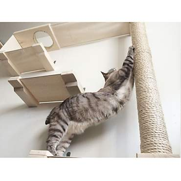 CatastrophiCreations Sky Track Hammock Play Set for Cats in Natural