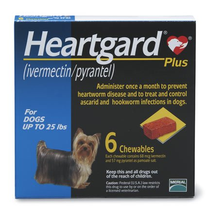 Heartgard Plus Chewables 51100 lb dogs Petco