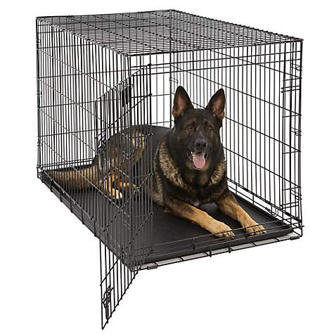 Midwest Lifestages Fold & Carry Crate for Dogs