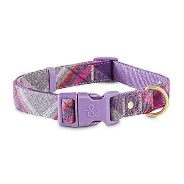 Bond & Co. Purple and Grey Tartan Dog Collar