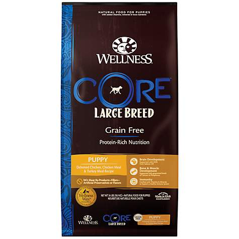 Wellness Core Large Breed Natural Grain Free Dry Puppy Food 24 Lbs