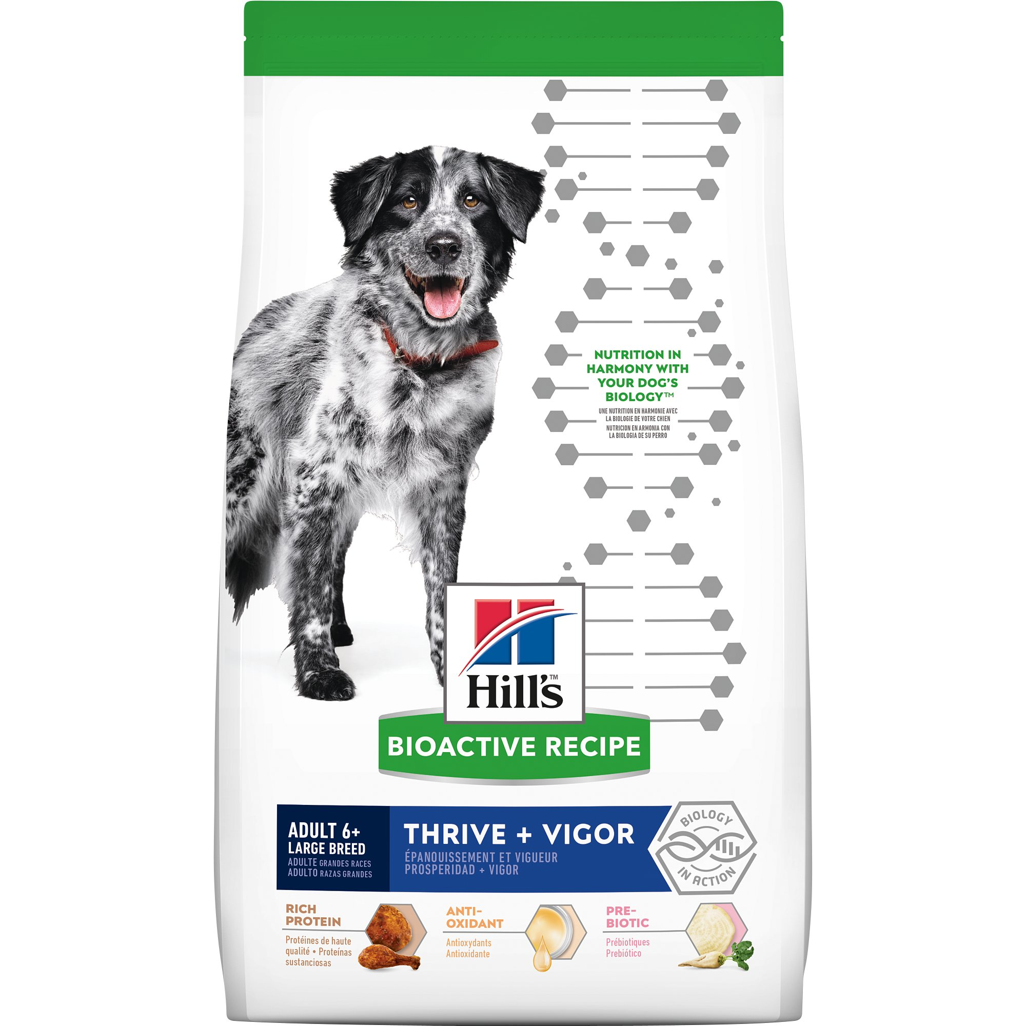 Hill's Bioactive Recipe Thrive + Vigor Chicken & Brown Rice Large Breed Adult Dry Dog Food, 22.5 Lbs.