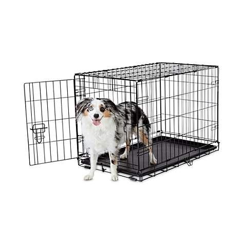 Animaze 1 Door Folding Dog Crate Petco