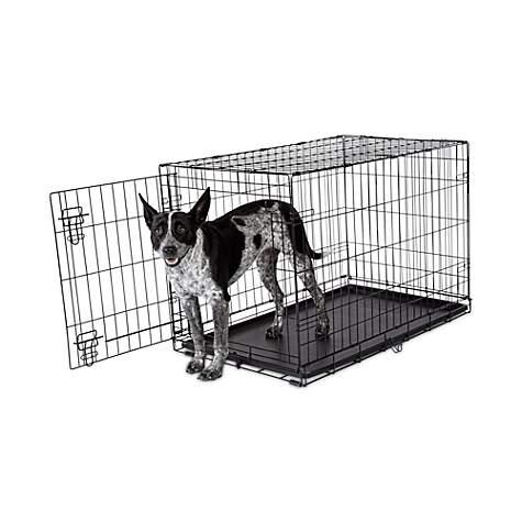 Animaze 1 Door Folding Dog Crate Petco