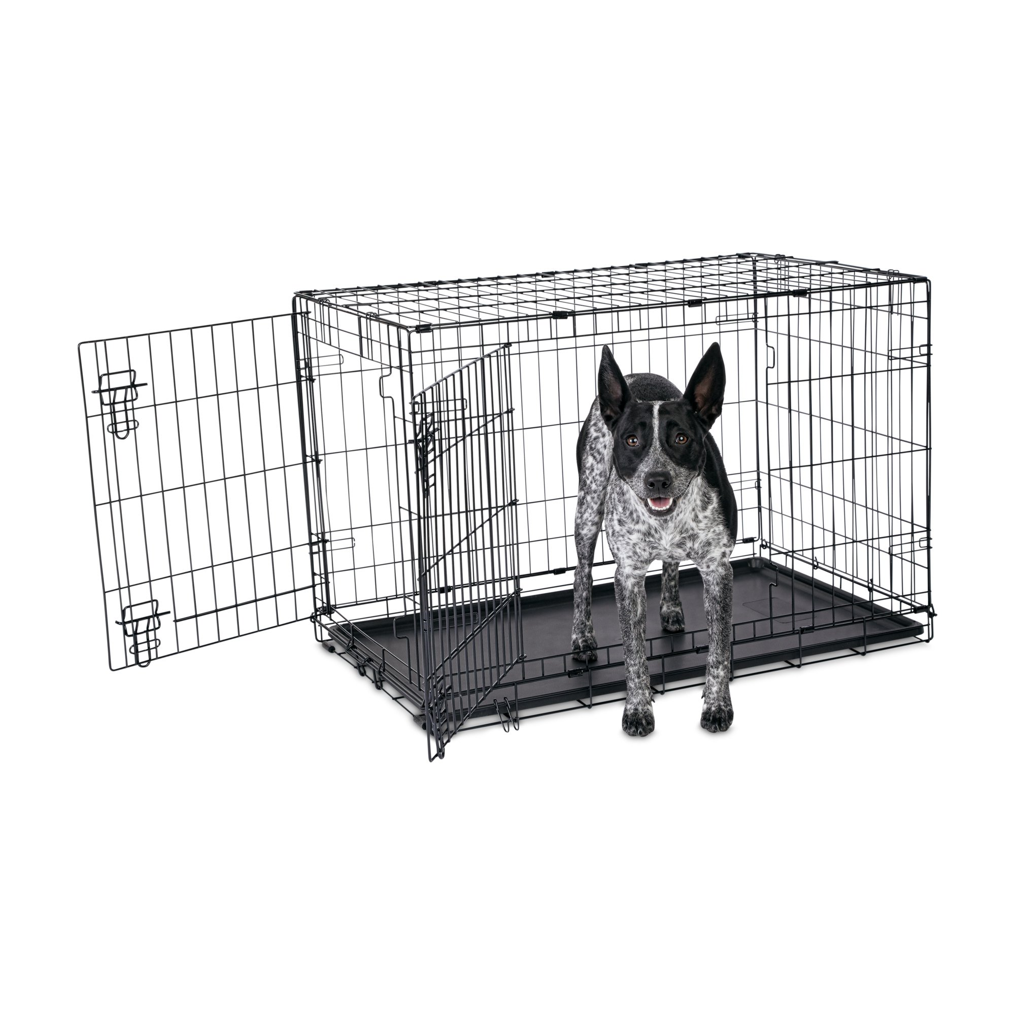 Animaze 2 Door Folding Dog Crate Petco