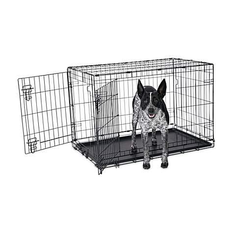 Animaze 2-Door Folding Dog Crate, 36 5