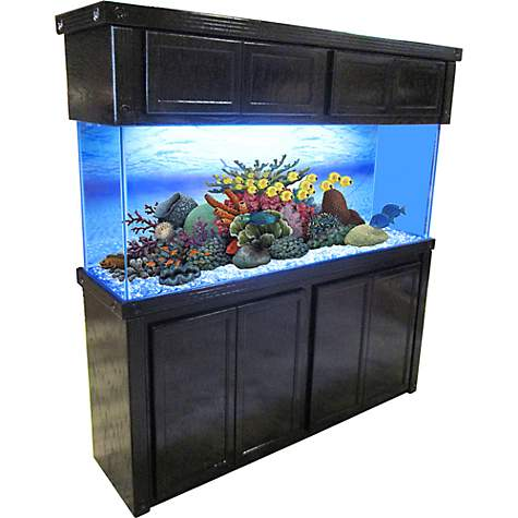 R&J Enterprises 72X18 Black Oak Empire Tall Reef Cabinet and Canopy Combo