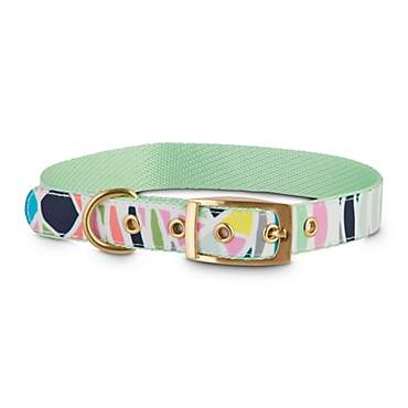Oh Joy! Oh So Stylish! Geometric Mint Dog Collar