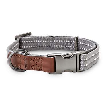 Reddy Grey Webbed Dog Collar
