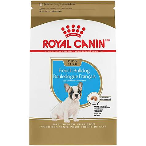 Royal Canin Breed Health Nutrition Cavalier King Charles Dry Puppy Food