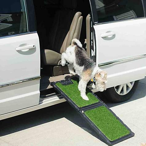 Gen7pets Outdoor Natural Mini Ramp For Dogs Petco