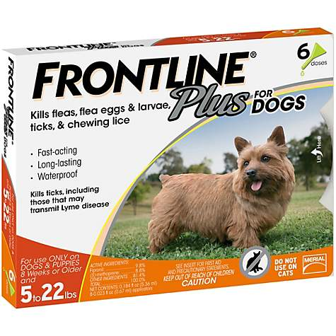 Frontline Plus Flea And Tick Treatment For Small Dogs Petco