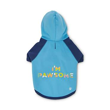 Oh Joy! Oh How Awesome! Dog Hoodie
