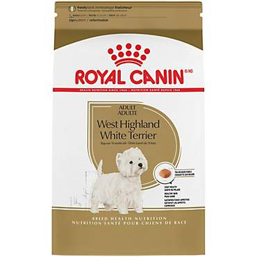 Royal Canin Breed Health Nutrition West Highland White Terrier Adult Dry Dog Food