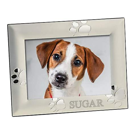 Custom Personalization Solutions Personalized Silver Dog Frame | Petco