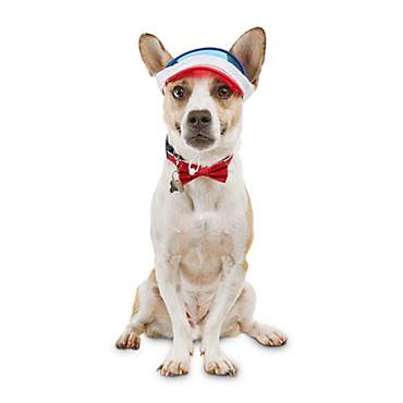 Bond & Co. Great American Dog Visor