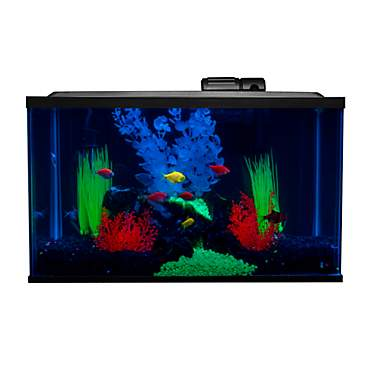 GLoFish Aquarium Glass Kit
