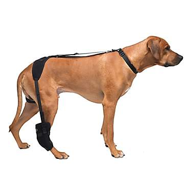 Caldera Hot & Cold Therapy Wrap with Gel for Dog Tarsals