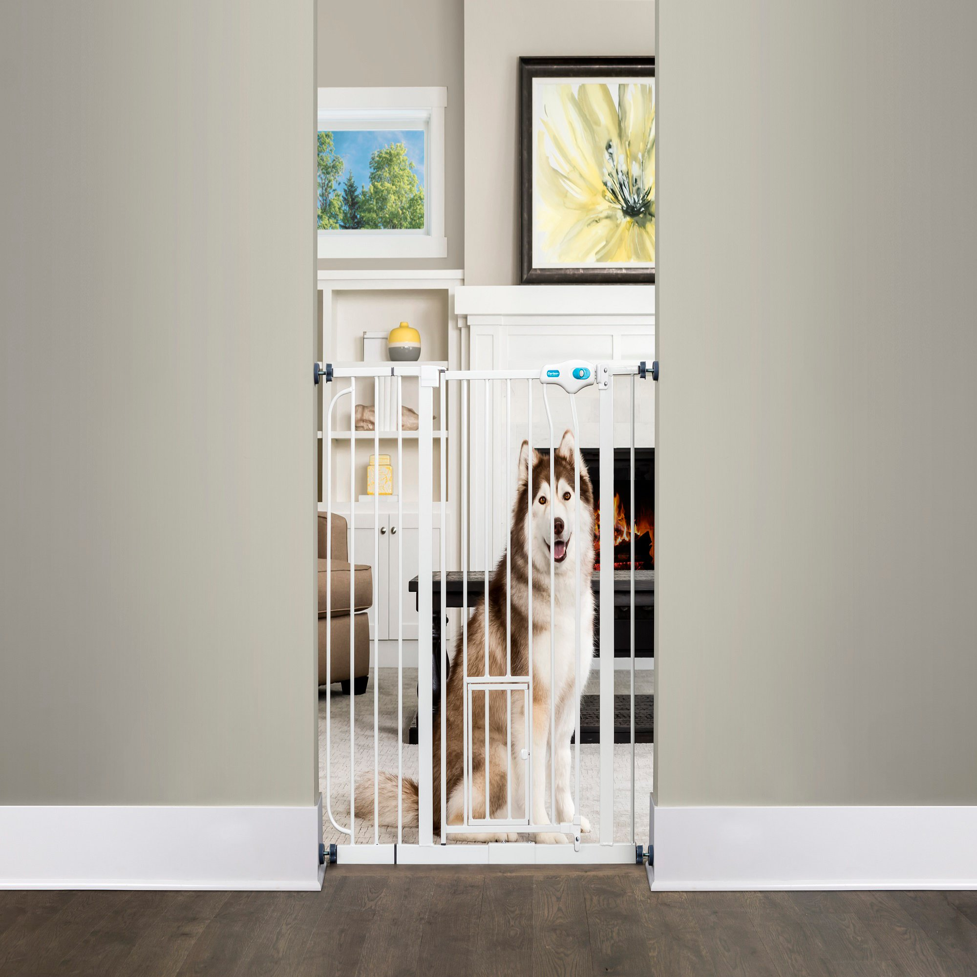 """Carlson Pet Products Extra Tall Walk Thru Pet Gate With Door, 39"""" 38.5"""" W X 36"""" L, Large"""