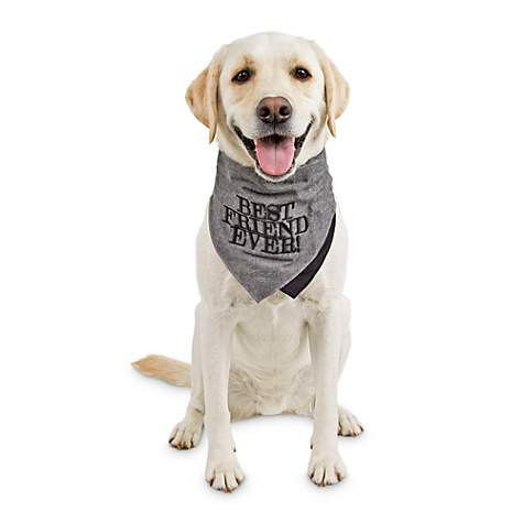 Reddy Best Friend Ever Black And Gray Dog Bandana X Small Small