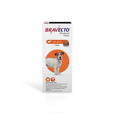 Bravecto Chewable Tablet for Dogs - Orange